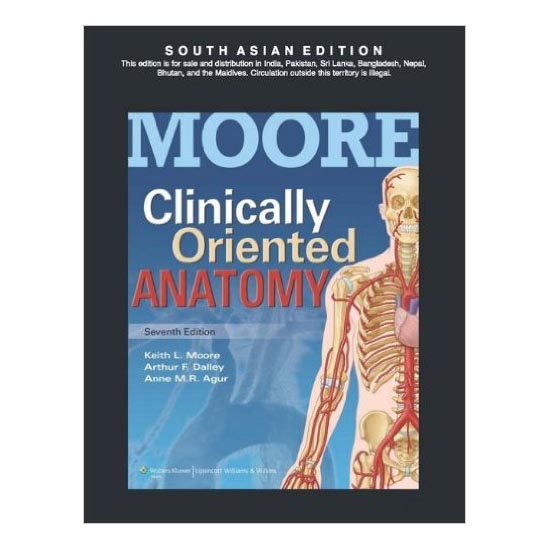 MOORE Clinically Oriented Anatomy 7th Edition A010575 large 1