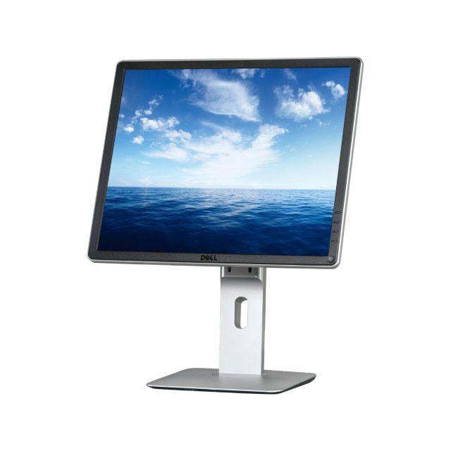 DELL 19 inch Monitor P1914S