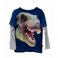 T-Rex Printed Boys T-shirt