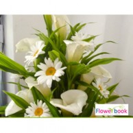 Mix roses 8 and gerberas 8 with statics flower arrangement GW0010
