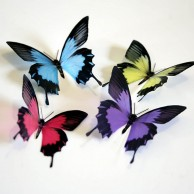 3D Butterflies Multi Color Design Deco