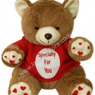 Specially For You Teddy Bear 13