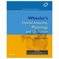 Wheeler's Dental Anatomy Physiology and Occlusion First South Asia Edition A200410