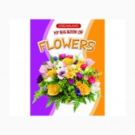 My Big Book Of Flowers B430200