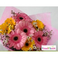 Bunch of 5 gerberas arrangement NB003