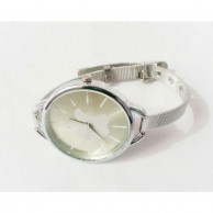 Fashion Classic Ladies Analog Watch Silver