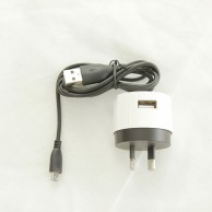 Wall Charger Micro Cable PW0032