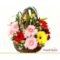 Mix gerberas flower basket CON006
