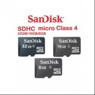 SanDisk MicroSD Card with Adapter