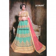 Multi Colour Embroidered Designer Lehenga Choli Design No 20011