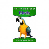 My First Big Book Of Birds J480005