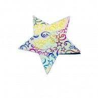 Pack Of 10 White Color Designed Christmas Decoration Star Stickers