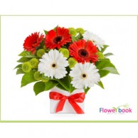 Red and White Gerberas Flower Arrangement AN001