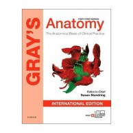 Grays Anatomy The Anatomical Basis Of Clinical Practice 41E A020672
