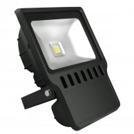20W LED Flood Light