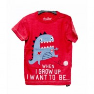 When I grow up Boys T-shirt