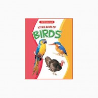 My Big Book Of Birds B430201