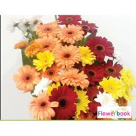 25 nos gerberas in one site flower arrangement TH001