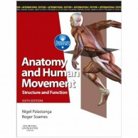 Anatomy and Human Movement 6E A020594