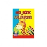 Big Book Of Colouring B900183