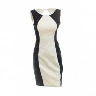 Application Aspiration Dress AVDR100564